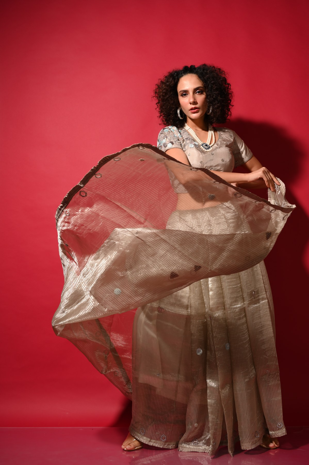 Organza Saree with contemporary embroidery motifs